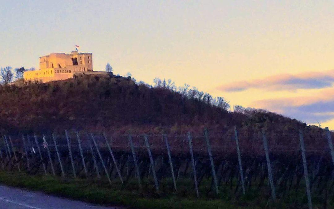 Wein und Wald um Maikammer